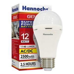Hannochs Genius 12W