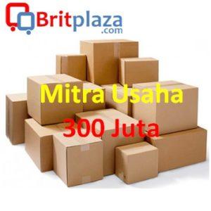 Mitra Usaha 300 Juta